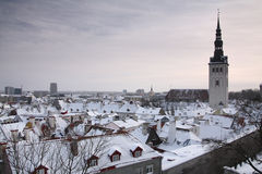 Tallinn in wintertijd Stock Fotografie