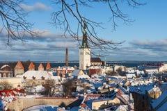 Tallinn zimy miasta panoramiczny krajobraz Obraz Stock