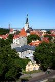 Tallinns alte Stadt im Sommer Stockfotografie