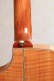 Tallone della chitarra Fotografia Stock