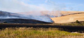 Tallos agrícolas de la planta de quemadura de los granjeros después del fuego de la cosecha de la comida Imágenes de archivo libres de regalías