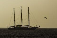 Tallship bij zonsopgang Stock Foto's