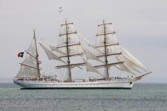 Tallship portoghese Sagres III di addestramento del blu marino Fotografia Stock