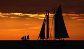 Tallship at twilight. Color photo of sailboats against sunset royalty free stock image