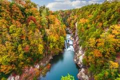 Tallulah Falls, Georgia, USA. Overlooking Tallulah Gorge in the autumn season royalty free stock photo