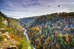 Tallulah Gorge in Georgië stock foto's