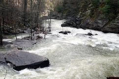 Tallulah River Gorge after a Winter Storm. The Tallulah River in Georgia flowing swiftly through the gorge after a winter storm royalty free stock image