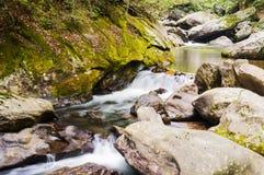 Tallulah rzeka Obraz Stock