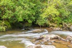 Tallulah rzeki Headwaters Zdjęcie Royalty Free