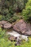 Tallulah rzeki Headwaters Zdjęcie Stock