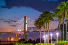 Talmadge Memorial Bridge over Savannah River in Georgia. USA at twilight Stock Photo