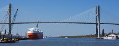 Talmadge Memorial Bridge. The Talmadge Memorial Bridge spans the Savannah River Royalty Free Stock Photography