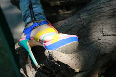 Talon haut au soleil Image libre de droits