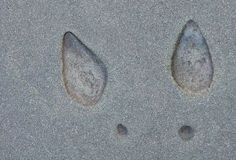 Talones en el cemento Imágenes de archivo libres de regalías