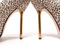 Talons Images stock