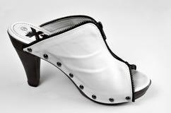 Talons de chaussure Photographie stock libre de droits