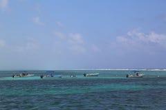 Talrika dykare och snorkelers som undersöker Bacalar Chico National Park och Marine Reserve i Belize Royaltyfria Bilder