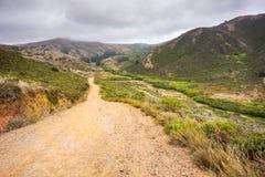 Talstraße im Landspitzenbereich an einem nebeligen Sommertag, Golden Gate-nationales Erholungsgebiet, Marin County, Kalifornien stockbilder