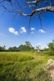 Talu Aok Khao Στοκ φωτογραφία με δικαίωμα ελεύθερης χρήσης