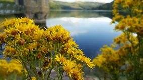Talybont-Reservoir Stockfoto