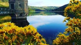 Talybont-Reservoir Stockfotografie