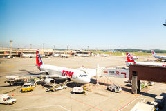 TAM Airplanes in Guarulhos Airport in Sao Paulo, Brazil Royalty Free Stock Photos