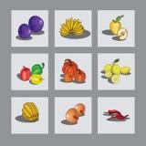 tam owocowy formata set royalty ilustracja