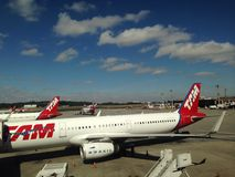 TAM-vliegtuig Stock Afbeeldingen