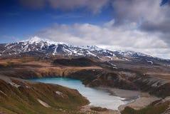 Tama湖在东格里罗国家公园,新西兰 免版税库存图片