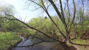Tama na małej rzece zbiory