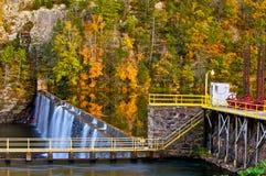 Tama na Nowej rzece przy dłoniakami, Virginia w jesieni Zdjęcie Stock