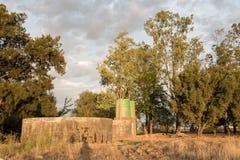 Tama, zbiorniki wodni i drzewa, Obrazy Stock