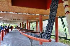 Tamaki Maori War Canoe na exposição no parque do Thermal de Whakarewarewa imagens de stock