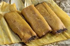 tamale royalty-vrije stock foto