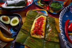 Tamale Mexican food recipe with banana leaves. Steamed Stock Photos