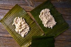 Tamale preparation Mexican recipe banana leaves. Tamale preparation Mexican recipe with banana leaves and cornmeal Royalty Free Stock Image