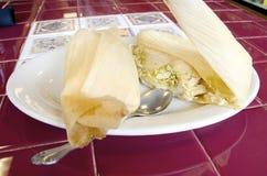 tamales Fotografie Stock