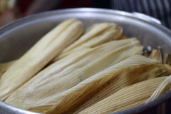 Tamales in the Pot. Tamales stuffed, stacked in the pot, and ready to be steamed Stock Photo