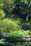 Taman Ayu tempel - Mengwi kunglig tempel 010 Royaltyfri Foto