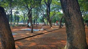 Taman monas Arkivbild