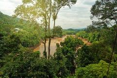 Free Taman Negara National Park Stock Images - 39275114
