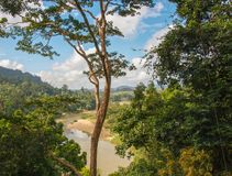 Taman Negra, Малайзия стоковые изображения rf