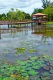 Taman Rekreasi Tasik Melati, Perlis, Malasia Foto de archivo libre de regalías