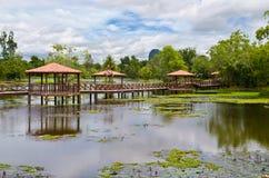 Taman Rekreasi Tasik Melati, Perlis, Malaysia Royalty Free Stock Photos