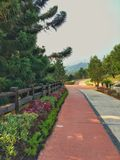Taman saujana hijau. Presint11 putrajaya inggeris garden with pine tree and cone grass green and red purple flower easy to jog and relax Stock Photo