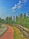 Taman saujana hijau. Presint11 putrajaya inggeris garden with pine tree and cone grass green and red purple flower easy to jog and relax Stock Photography