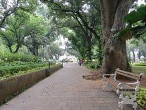 Taman Suropati Menteng, Τζακάρτα Στοκ Εικόνες