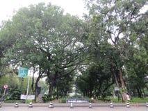 Taman Suropati Menteng, Dżakarta Obraz Stock