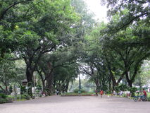 Taman Suropati Menteng, Jakarta. Public park Royalty Free Stock Photography