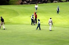 Tamandayu高尔夫球 库存照片